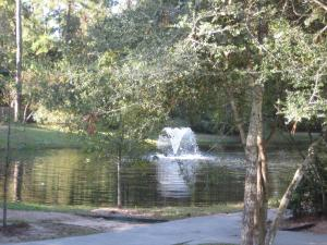 Idelewood Pond and Fountain
