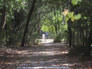 Chandler Creek has beautiful paths