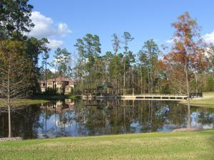 Carlton Woods has fantastic parks, ponds and trails