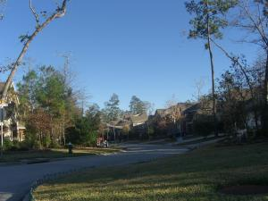 A peak into the Degas Park neighborhood