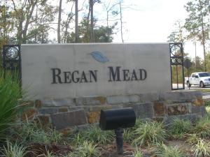 Regan Mead Neighborhood Marquis