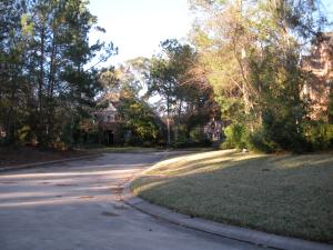 Tealpoint Neighborhood Streetscape